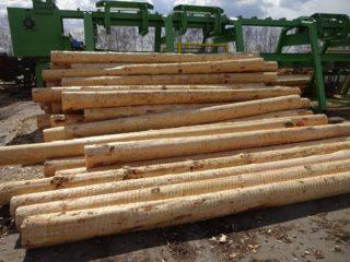 バーカー処理後の原木